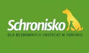 schronisko_torun_mm_torun